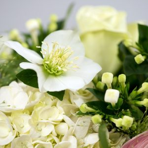 Flowers delivered - Calm